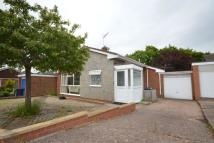 Detached Bungalow in Winston Road, Exmouth...