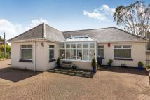 Detached Bungalow for sale in Townshend, Hayle, TR27