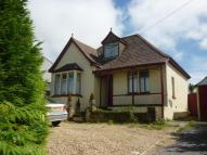 Detached Bungalow for sale in Sandy Lane, Redruth, TR15