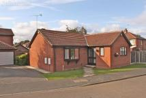 Detached Bungalow for sale in Paddock Close, Cusworth...