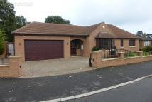 Detached Bungalow for sale in Sandall Park Drive...