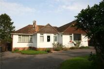 3 bedroom Bungalow for sale in Woodley Lane, Romsey...