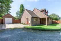 3 bed Detached Bungalow in Gravel Hill, Bexleyheath...