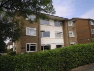 Melbury Gardens Flat to rent