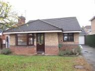 Detached Bungalow in Lamorna Close...