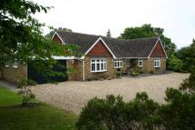 Detached Bungalow for sale in Prospect Road...