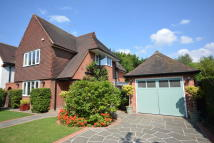 Detached house for sale in RISEBRIDGE ROAD...