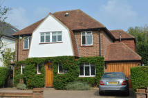 4 bed Detached house in AYLOFFS WALK...