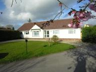 4 bedroom Detached Bungalow for sale in Southdown, Wanborough...