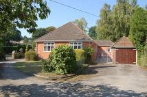 Detached Bungalow for sale in Old Bishopstoke