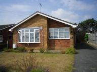 Detached Bungalow in Upper Grange Crescent...