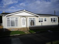 Detached Bungalow for sale in Marsh Farm, Cobholm...