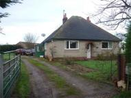 2 bed Detached Bungalow in Maldon Road, Stanway...
