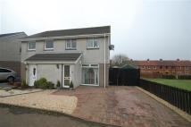 3 bed semi detached house in Cameron Grove...