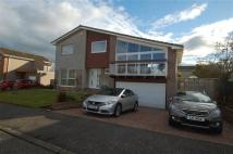 Detached Villa in The Spinneys, Dalgety Bay