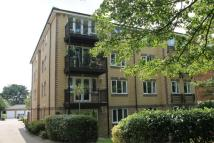 2 bed Flat to rent in Sycamore Court...