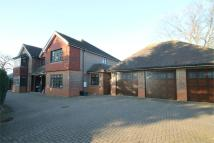 5 bed Detached property to rent in North Drive, Beckenham...