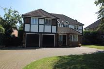 Shirley Detached house for sale