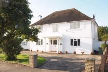 Link Detached House in Brabourne Rise...