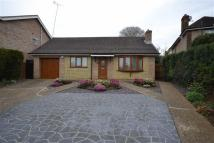 Detached Bungalow in The Crescent, Kettering