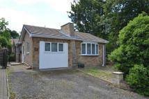 Detached Bungalow for sale in High street, Cottingham