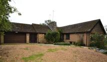 Detached Bungalow to rent in Main Street, Drayton...