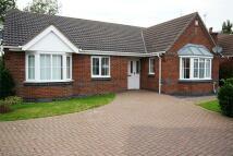 Detached Bungalow to rent in Bleaklow Close...