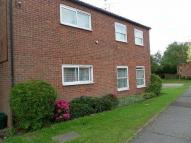 Ground Flat in Affleck Road, Colchester