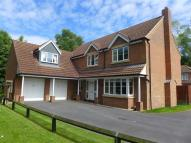 5 bedroom Detached house for sale in Maple Drive...