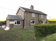 Cottage to rent in Calcethorpe