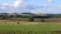 property for sale in 400 Acres - Ash Grove Farm, Market Rasen, Lincolnshire, LN8