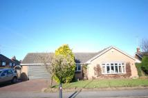 Detached Bungalow for sale in Meden Avenue, Warsop