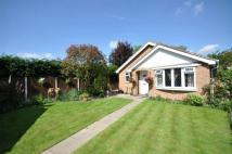 2 bed Detached Bungalow in Kynance Close, Alfreton