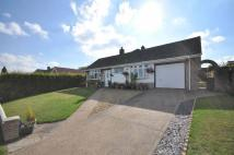 Detached Bungalow in Black Scotch Lane...