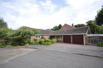 Detached Bungalow for sale in Berry Hill Gardens...