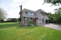 4 bedroom Detached home for sale in The Avenue, Mansfield