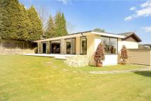 Bungalow for sale in Crowborough Hill...