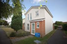 Link Detached House to rent in Meadowlands, Lymington