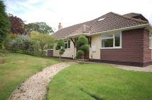 Detached Bungalow in South Sway Lane, Sway...
