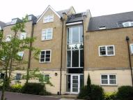 Ground Flat to rent in Cressing Road, Braintree...