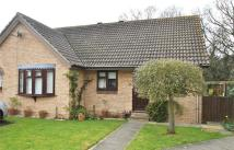 Semi-Detached Bungalow for sale in Thames Close, BRAINTREE...