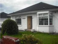 Bungalow to rent in Wester Road...