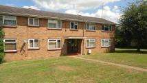 1 bedroom Apartment to rent in Clavering Road, Braintree