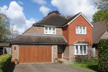 Detached property to rent in Pipers Close, Cobham...