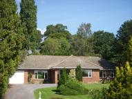 Twinoaks Detached Bungalow to rent