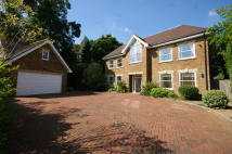 5 bedroom Detached property in Pony Chase, Cobham, KT11