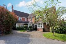 6 bed Detached property to rent in St. Andrews Gardens...