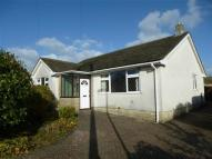 Bungalow to rent in Beech Grove, Chepstow
