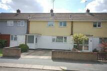 2 bedroom Terraced home in BASILDON, Essex