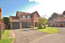 5 bed Detached house in HORNDEAN
